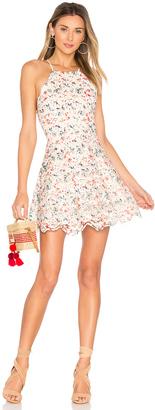 Tularosa Cyrus Dress $188 thestylecure.com