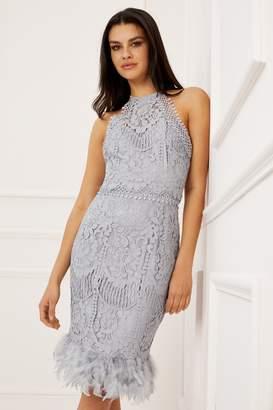 240b06e126cb Next Lipsy VIP Lace Feather Hem Dress - 8