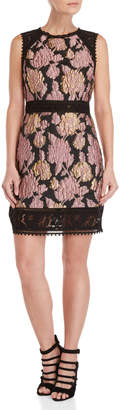 Laundry by Shelli Segal Jacquard Lace Trim Dress
