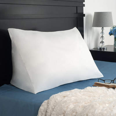 Wayfair Collinsville Down Alternative Pillow
