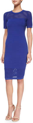 Milly Short-Sleeve Ribbed Dress W/ Mesh