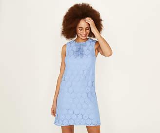 Oasis DAISY LACE DRESS