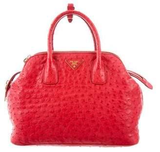 Prada Struzzo (Ostrich) Double Zip Handle Bag