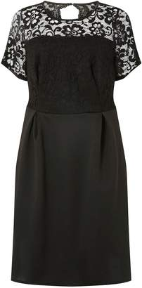 b7a7657b3fd Dorothy Perkins Womens   Dp Curve Black Lace Scuba Fit And Flare Dress