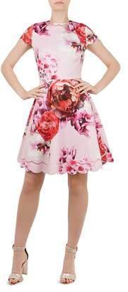 Ted Baker Seeana Splendour Scalloped Dress