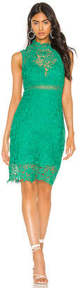 Bardot Eleni Lace Dress