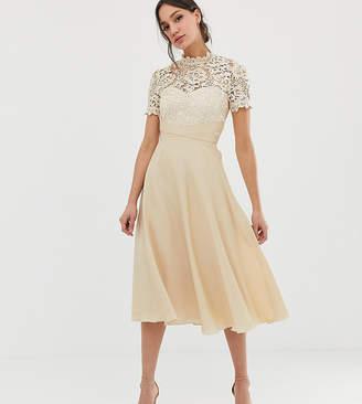 Little Mistress Tall lace top midi prom skater dress in cream