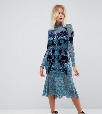 Hope And Ivy Hope & Ivy Long Sleeve Lace Dress With Velvet Applique Detail