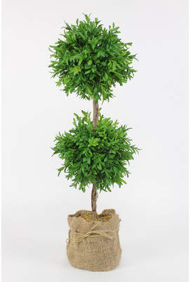 August Grove Myrtle Topiary Ball in Pot (Set of 2)