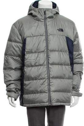 The North Face Quilted Paneled Down Jacket