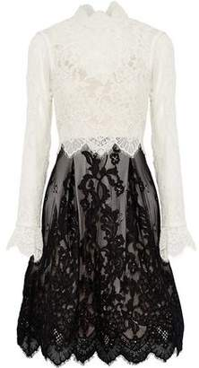 Catherine Deane Scalloped Two-Tone Corded Lace Dress