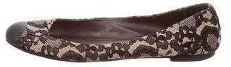 Giuseppe Zanotti Lace Ballet Flats