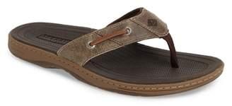 Sperry 'Baitfish' Sandal