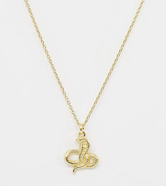 Asos Design DESIGN sterling silver with gold plate necklace with snake pendant