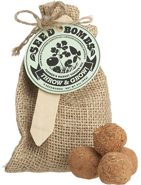 Crate & Barrel Farmer's Market Seed Bombs