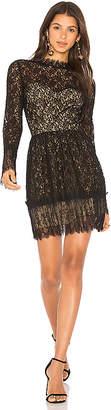 Saylor Amity Lace Dress