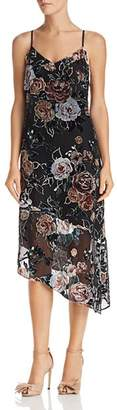 Nanette Lepore nanette Floral Burnout Velvet Dress