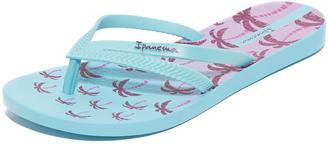 Ipanema Duet Palm Flip Flops $23 thestylecure.com