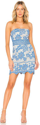 Endless Rose Crochet Lace Border Dress