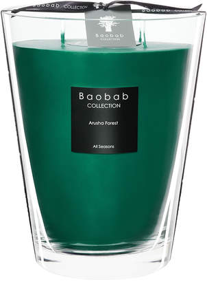 Baobab Collection All Seasons Scented Candle