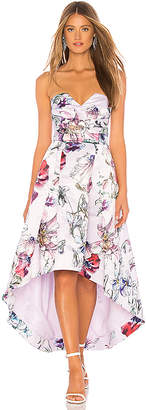 Parker Black Clemson Dress