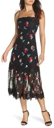BB Dakota Let's Dance Mesh Midi Dress