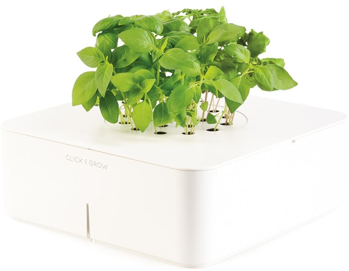 Williams-Sonoma Click and Grow Starter Kit, Basil
