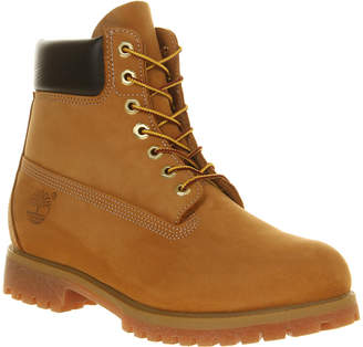 Timberland 6 In Buck Boots