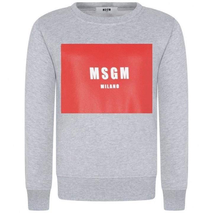 MSGMBoys Grey & Red Logo Sweater