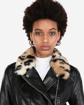 Express Leopard Collar Moto Jacket