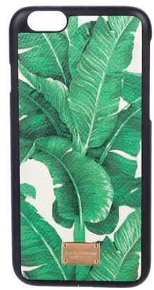 Dolce & Gabbana Printed iPhone 7 Case