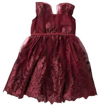 AVA AND YELLY Embroidered Mesh Party Dress (Little Girls)