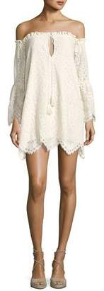 Red Carter Deidra Off-the-Shoulder Lace Dress, Off White $230 thestylecure.com
