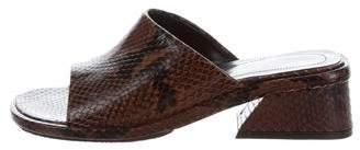 Dries Van Noten Python Slide Sandals w/ Tags