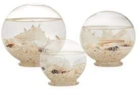 Twos Company Two's Company Globe Shells/Set of 3