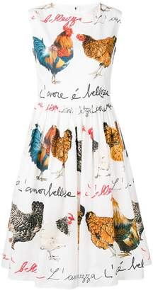 Dolce & Gabbana rooster print flared dress