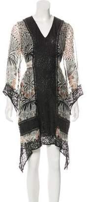 Anna Sui Lace-Trimmed Silk Dress