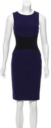 Narciso Rodriguez Sleeveless Work Dress