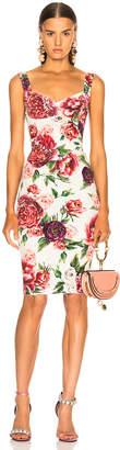 Dolce & Gabbana Peony Print Charmeuse Midi Dress