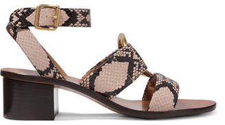 Chloé Rony Embellished Snake-effect Leather Sandals - Snake print