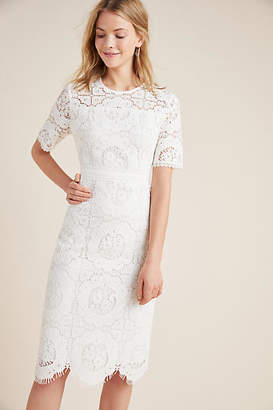 bd6a8bbfaa Shoshanna White Lace Dress - ShopStyle