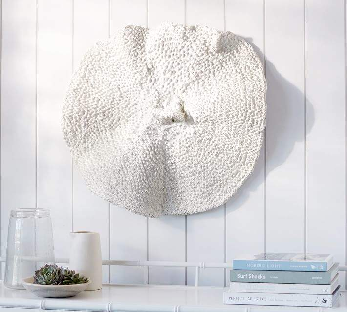 Oversized Coral Wall Mount