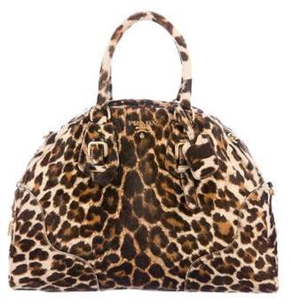 82730a592ea5 Prada Animal Print Handbags - ShopStyle
