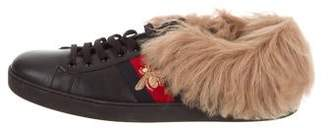 Gucci Ace Shearling Sneakers