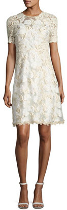 Elie Tahari Larsa Short-Sleeve Lace Dress, Cream $598 thestylecure.com