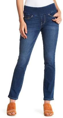 Jag Jeans Penny Straight Leg Jeans (Petite)