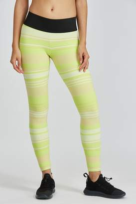 Koral Envy Legging