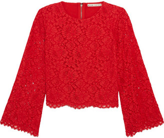 Alice + Olivia Alice Olivia - Pasha Corded Lace Top - Red $265 thestylecure.com