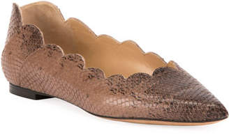 Chloé Lauren Scallop Lizard-Print Pointy-Toe Ballet Flats