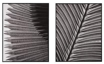 Palm Fronds Decorative Box 2pc Decorative Wall Art Set Black